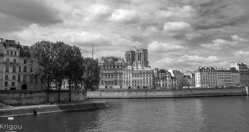 Paris_-_Pointe_de_l'île_Saint-Louis_ave