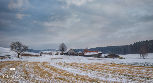 Paysage_hivernal_près_de_Meikirch_with_