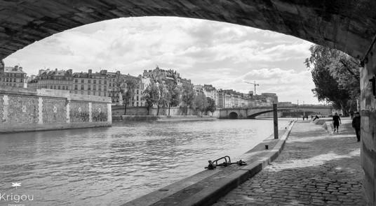 Sous un pont de Paris avec logo NB.jpg