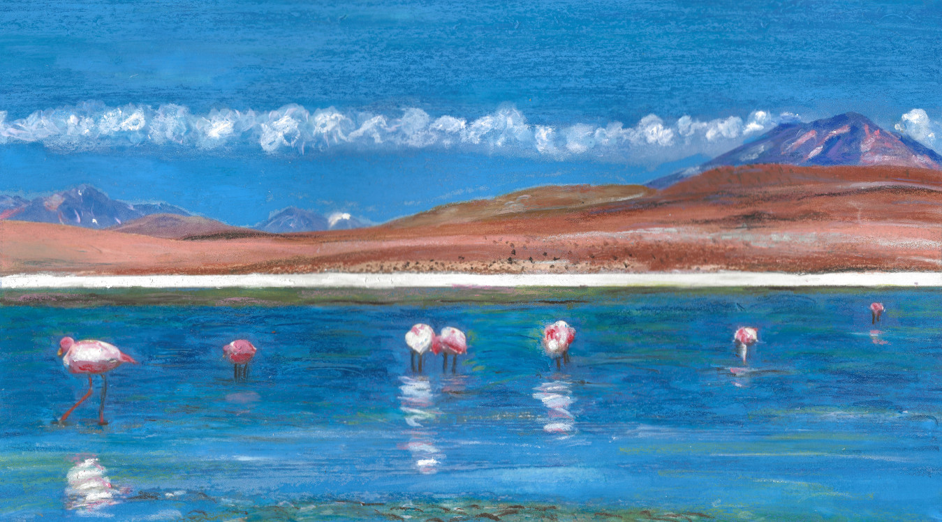 Flamands dans la lagune - Sur Lipez - Format A4