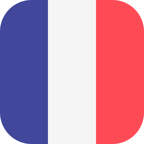 2-on-1 Semi-Private French Course