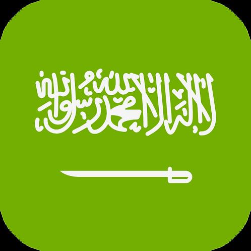 1-on-1 Arabic
