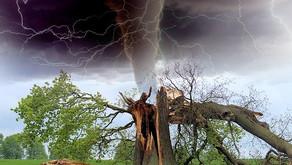 Η Δύναμη της φύσης