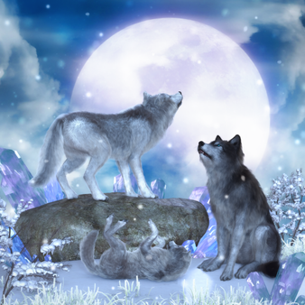 Singing To The Wolf Moon