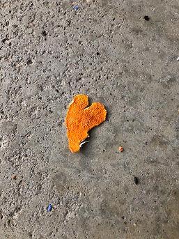 Orange Peel Heart.jpg