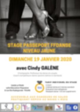 Fly stage jaunejanv_20.jpg