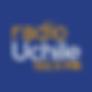 radio universidad de chile programa sali