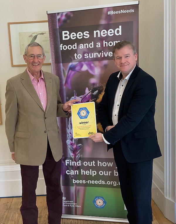 Bees Needs Award