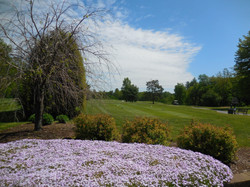 The Gorgeous Grass is Calling at Airway Meadows!