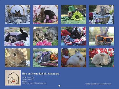 rabbit-rescue-calendar-back-cover.jpg