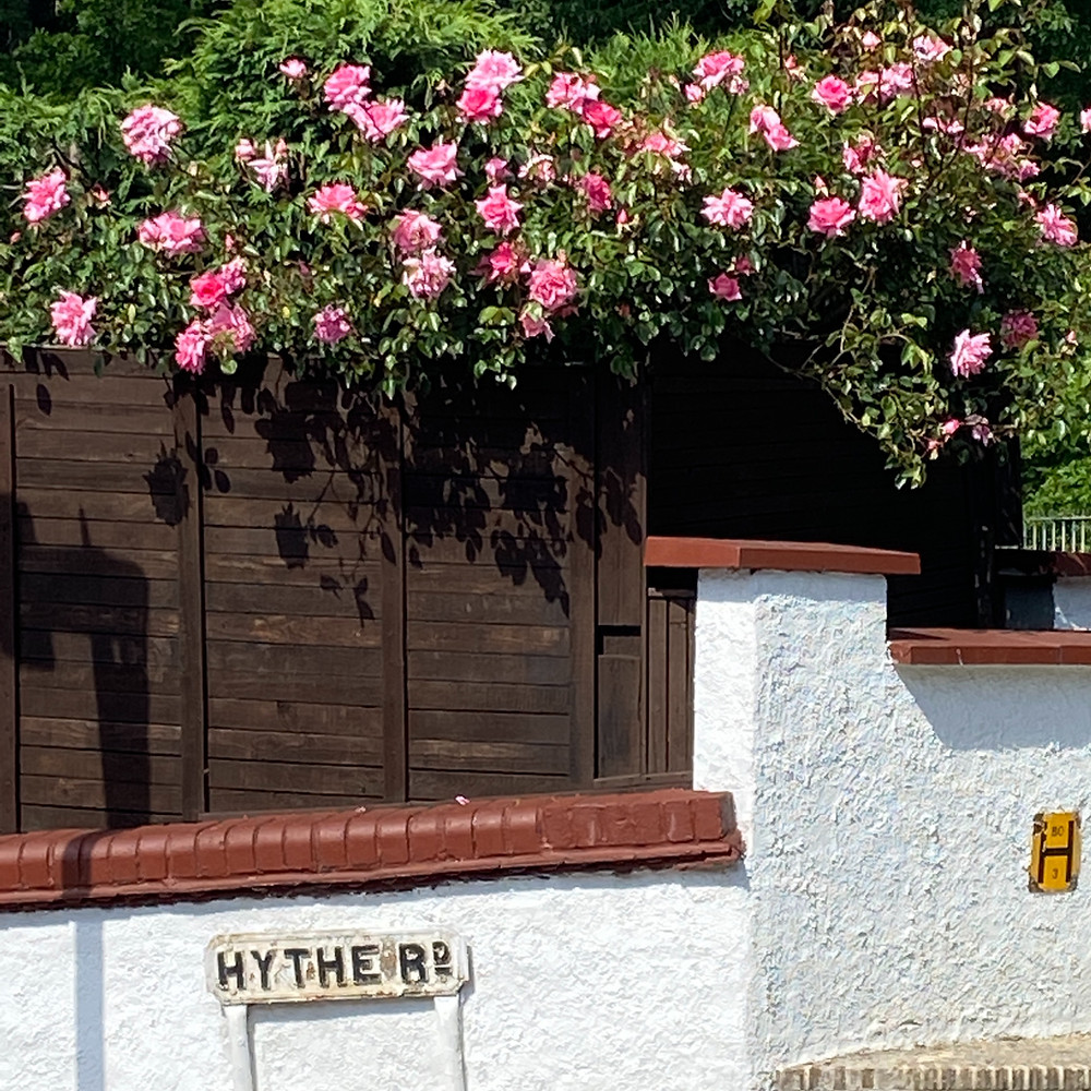 A road sign called 'Hythe Rd' is visible under a thick overhang of pink flowers atop a brown wooden fence.