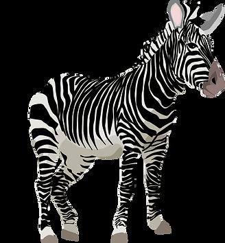 zebra-152604.png