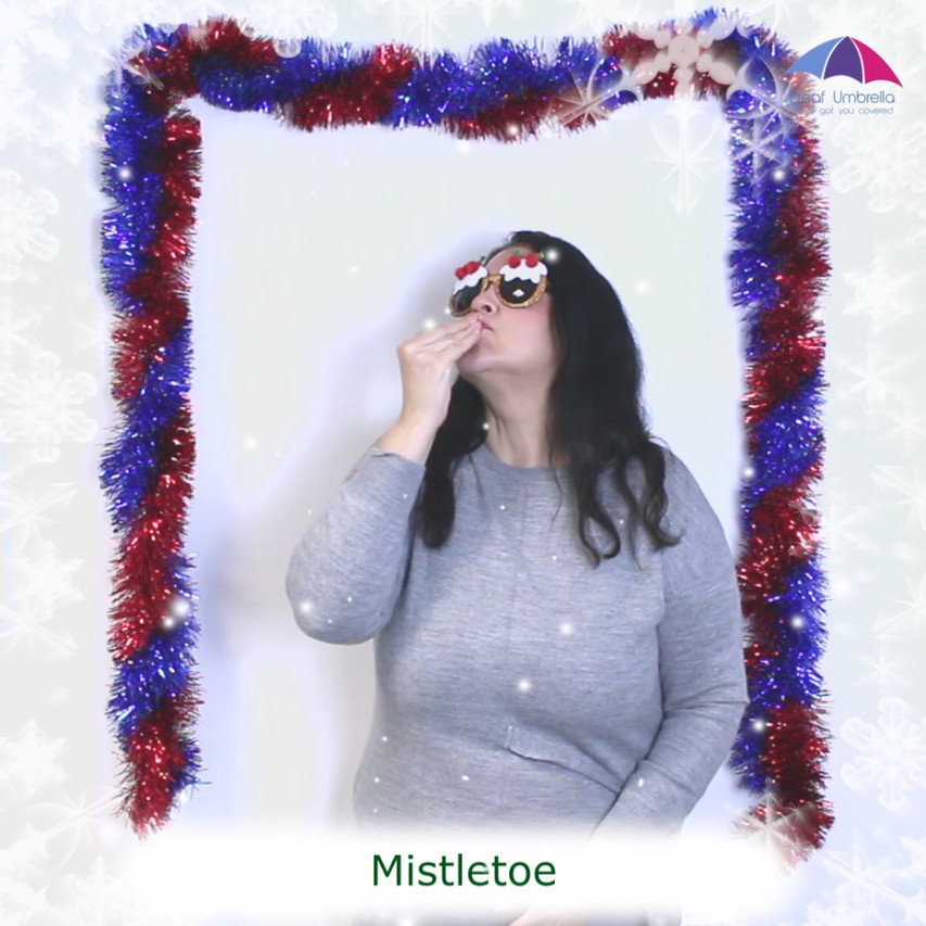 BSL Advent Calendar | Mistletoe