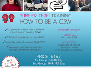 [HOW TO BE A CSW Course] Summer Term