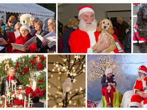 Christmas Market & Hearing Dogs