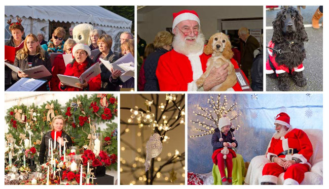 Hearing Dogs for Deaf People Christmas Market