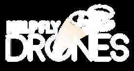 logo_helpflydrones_branco.png