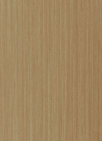 10879 Silver Oak Streak