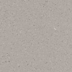 Schemar Shingle Dove