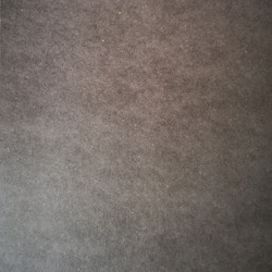 FORESCOLOR Dark Grey