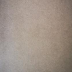 FORESCOLOR Light Grey