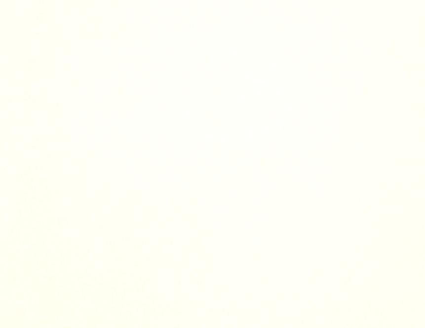 21741 Designer White*