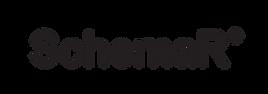 160204 SchemaR logo.png