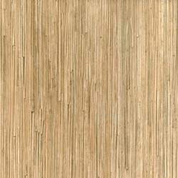 10512 Koala Bamboo