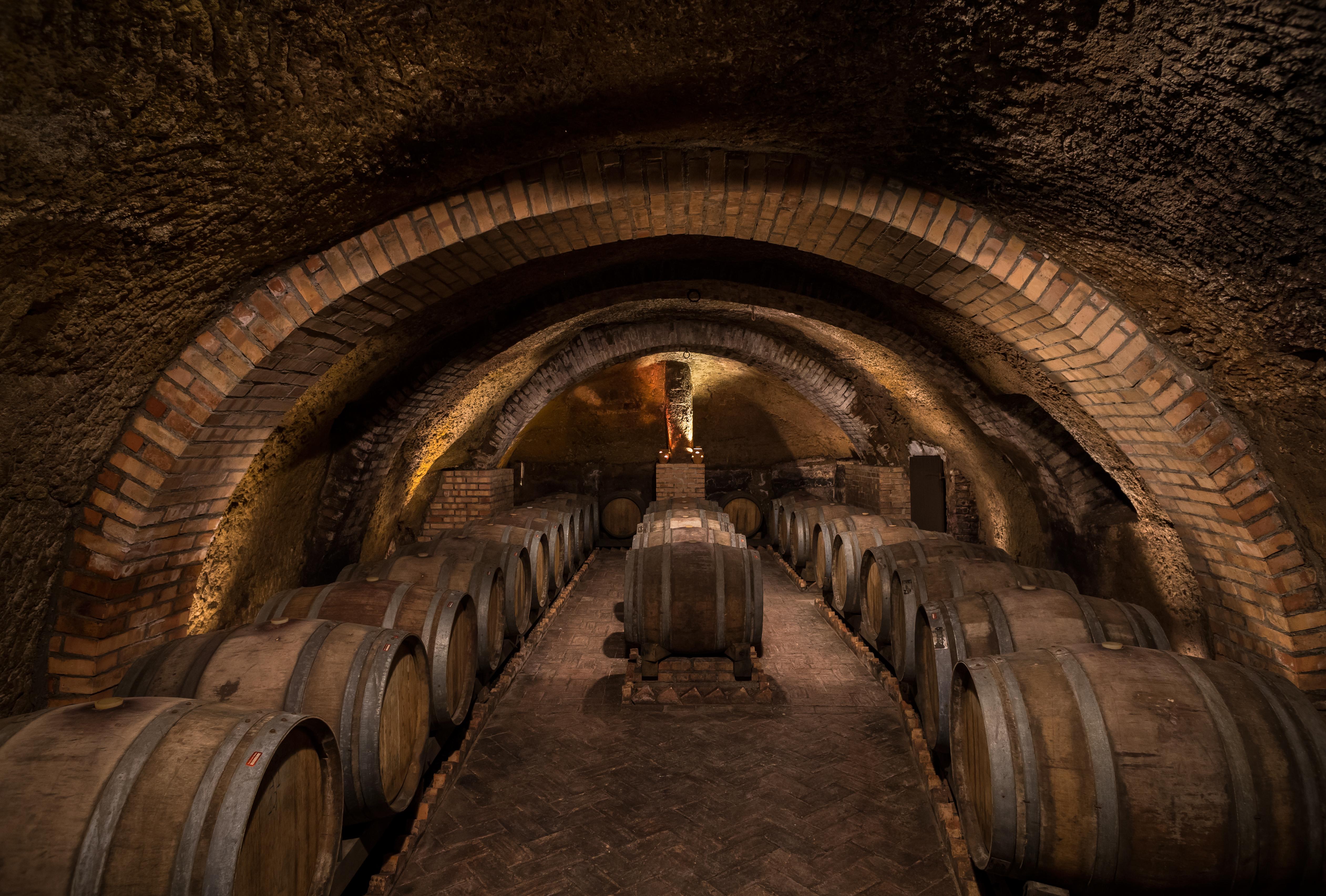 15th Century Wine Cellar