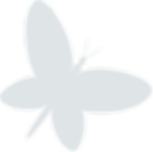 LogoMakr_4PKaNG white butterfly.png