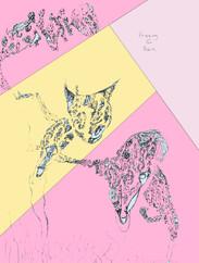 IMG_7372-colors3.jpg