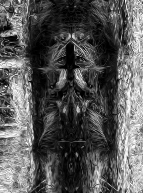 IMG_9380-bw-topcrop-oil.jpg