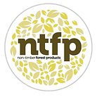 NTFP.png