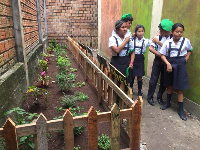 Claverito School Secret Garden2.jpg