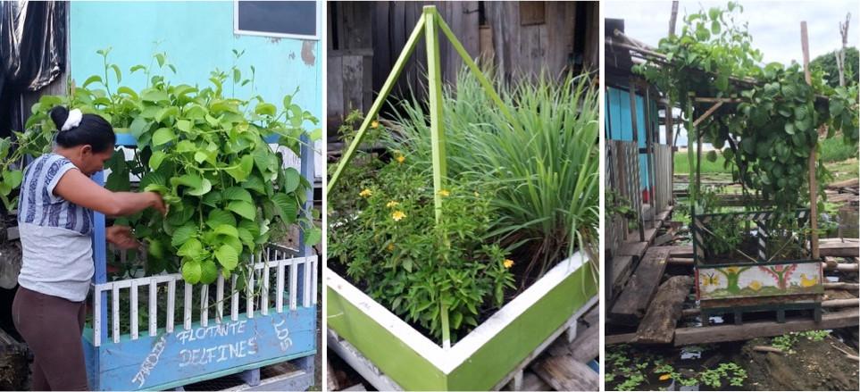 gardens lined up.jpg