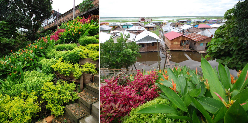 Iquitos Hillside Garden2.jpg