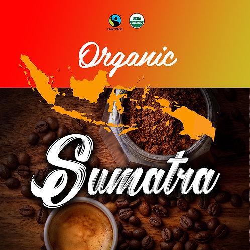 Organic Sumatra 12oz - Medium Roast