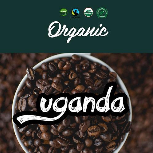 Organic Uganda Bugisu 12oz - Medium Roast