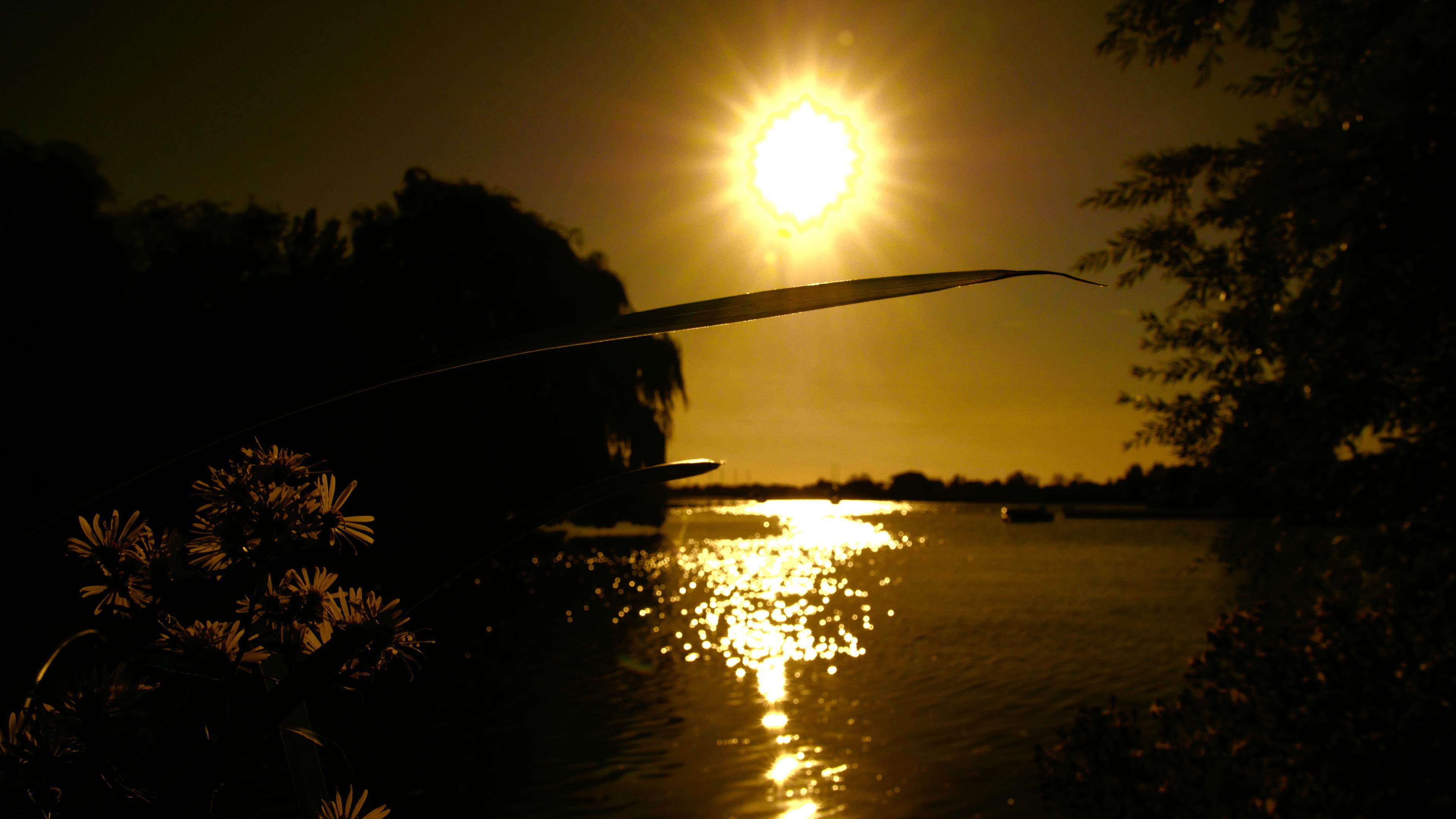 Golden Sunset on Water