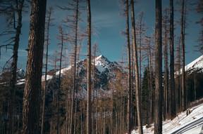High Tatras (Martin Tatar)