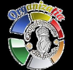 Romanians in Ireland organisation logo.p
