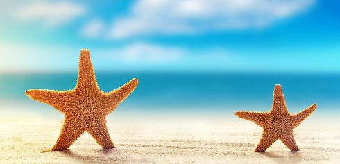 Starfish 3a.jpeg