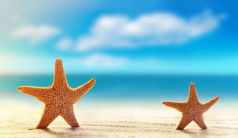 Starfish 3.jpeg