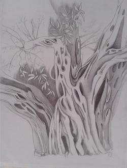 Luft und Holz