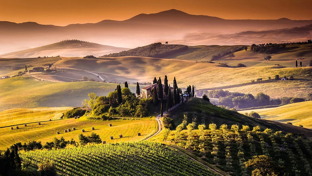Tuscan wine region