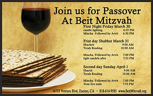 Beit Mitzvah passover Post Card.jpg