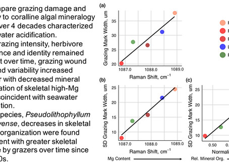 New paper out: Coralline algal skeletal mineralogy affects grazing