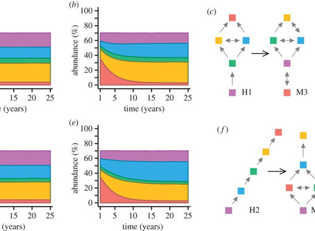 New paper out: Modelling confirms changes to interactions as coralline algae respond to OA