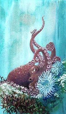 octopus%20mini_edited.jpg