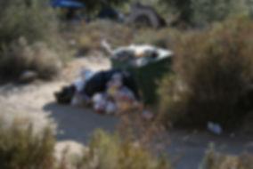 "Exorbitant,  uncontrolledvisitoruse in ""Dispersed Camping Areas"" on public lands."